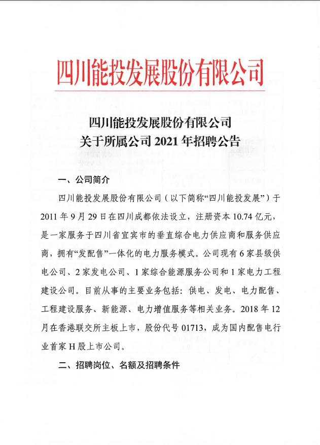 四川能投发展股份有限公司(国有控股)
